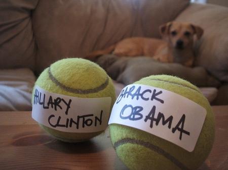 hillary ou obama?