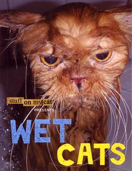 wetcat1
