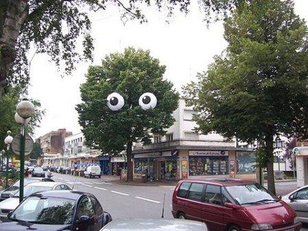 arvore-com-olhos