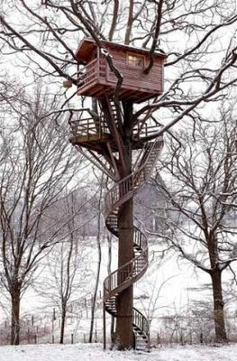 amazing-treehouse